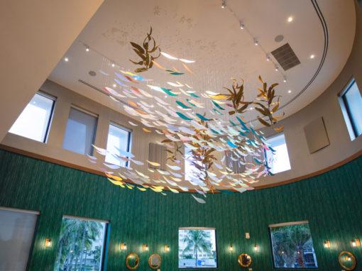 Oceanic | Suspended Fish