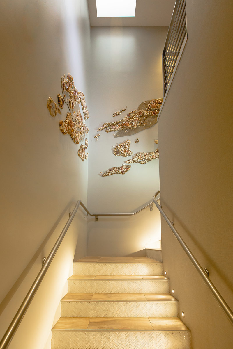 seashell wall texture art