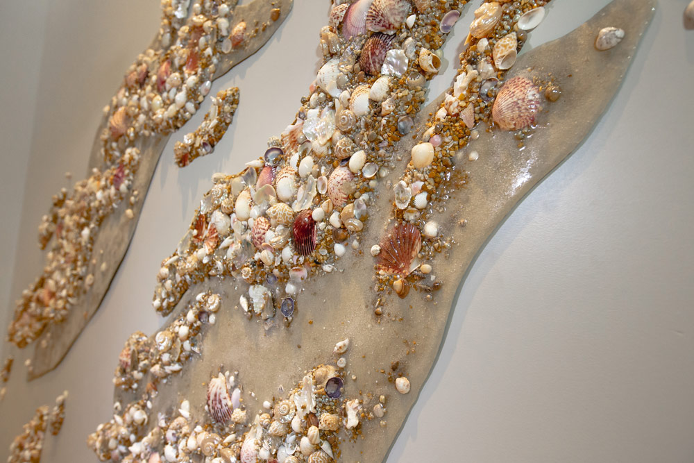 Oceanic | Seashell Wall Texture